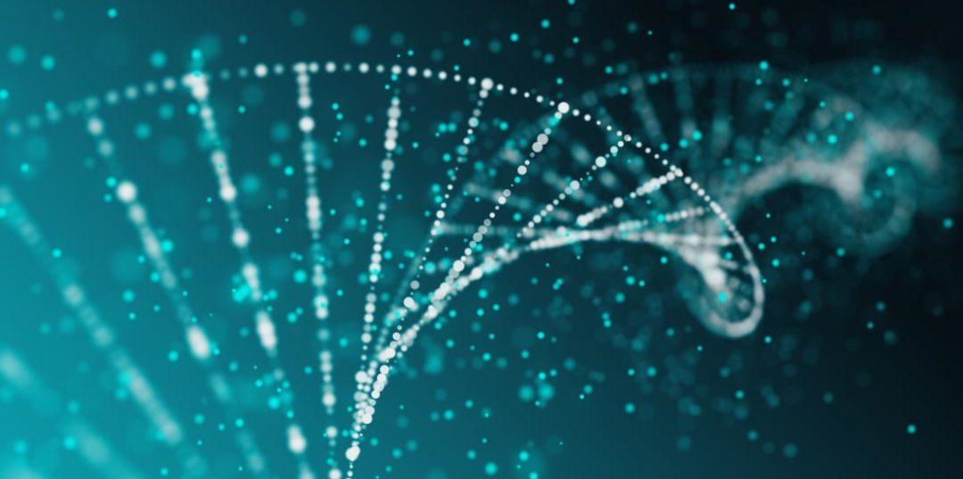 sms erfelijk gen